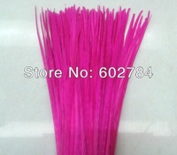 Free Shipping 100PCS 50-55cm 20-22 inches Hot pink / Fuschia dyed Pheasant tail feathers Dying ringneck pheasant feather