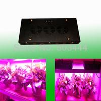 Newest hydroponics lighting 300W Pink SMD LEDS Hydroponic LED Plant Grow Lights led bulb LED LIGHT