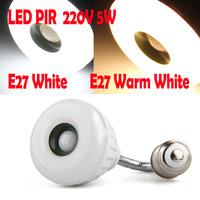 Led Lamp E27 220V 25 LED 3528SMD 5W Warm White White Light bulb IR Infrared PIR Motion Sensor light Detector 400LM 3600K 6000K