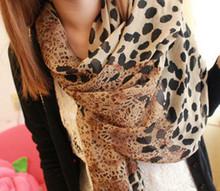 popular star print scarf