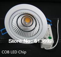 COB 20W ceiling light led ceiling lamp indoor light AC85V~265V 110V 220V 20/30/60Degree DHL Free Shipping