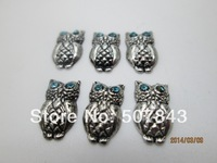 Blue Eye Owl Floating Charm