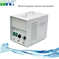 1 g/h small water and air ozone generator for house