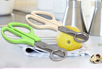 Quail egg scissors for kitchen, quail egg cutter Stainless steel kitchen scissors with  ABS handle .Free shipping