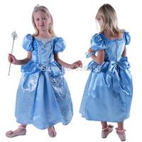 Party Cosplay Costume /Girls Christmas Cinderella Skirt /Princess dress/Halloween Costumes /fancy dress