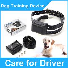 popular electronic pet control
