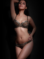 2014 Top selling Embroidered Lace Bra set Sexy Acousma bras & brief sets G-string thong T underwear Pants A B  C cups Leopard