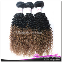 Free Shipping 3 Bundles Virgin Weaving 100% Human Hair Natural Black 1B/Dark Brown Curly Brazilian Virgin Ombre Hair