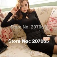 Free Shipping High Neck Long Sleeve Irregular Bottom Dresses ,Plus Size Women Dress 2014 Winter Dress S,M,L,XL, 2 Color