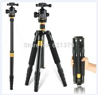 Professional Ultralight Camera Tripod Portable Tripod and Ball Head Combo for Dslr