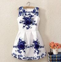 Retro Women New  2014 Summer Blue White Porcelain Mini Girl Dress Sleeveless Vintage Flower Print dress Basic Vest Casual dress