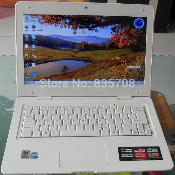13.3 Inch Laptop Intel Atom D2500 Dual Core 1.86Ghz Windows 7 1GB RAM 160GB HDD Netbook WiFi Webcam Notebook PC free shipping(China (Mainland))