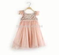 Free Shipping 5pcs/lot, Kids 2014 sequined  girls princess lace dress