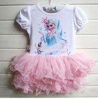 New 2014 Custom-made Movie Cosplay dress summer girl dress Costume Princess Elsa Dress from Frozen for Children princess dress