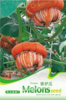 Incensing melon seeds - balcony plant pumpkin seeds 5 seeds b014