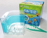 Brand New 3D Educational Nursery Live Ant Farm Gel Maze  Feeding System Ant Novelty Habitat