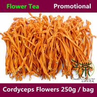 Tea / Flower Tea 500g Supplements For Fitness Tonic Cordyceps Flowers, Health Care Dried Fowers Supplements And Vitamins 250g*2