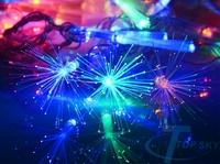 220V 6W 10m 100 LED Optical Fiber Flower Fairy String Colorful Light For Xmas Christmas Wedding Party US Plug