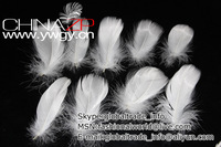 Free Shipping 100pcs/color/lot  Bleached White Turkey Marabou Feathers