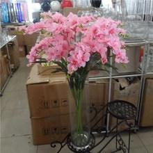 wholesale freesia flower