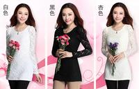 beautiful women basic shirt female lace Hollow out shirt medium-long slim long-sleeve T-shirt---free shipping
