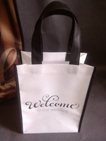 W20xH25.5xD13cm Custom non woven shopping bag with printed company logo free shipping