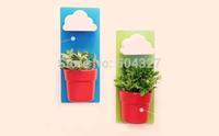 Free Shipping 1Piece Rainy Pot / Wall-hung Flowerpot / Wall-hung Cloud Flowerpot