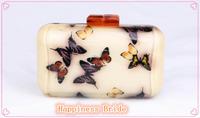 2014 new fashion women's chain handbag small beautiful butterfly acrylic bottle small bag evening bag for fashion women SH01