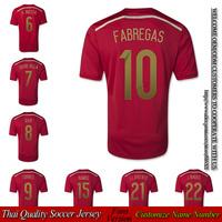 Spain home Fans Version Embroidery A.INIESTA soccer jersey DAVID VILLA XAVI PIQUE spain jerseys TORRES FABREGAS free shipping