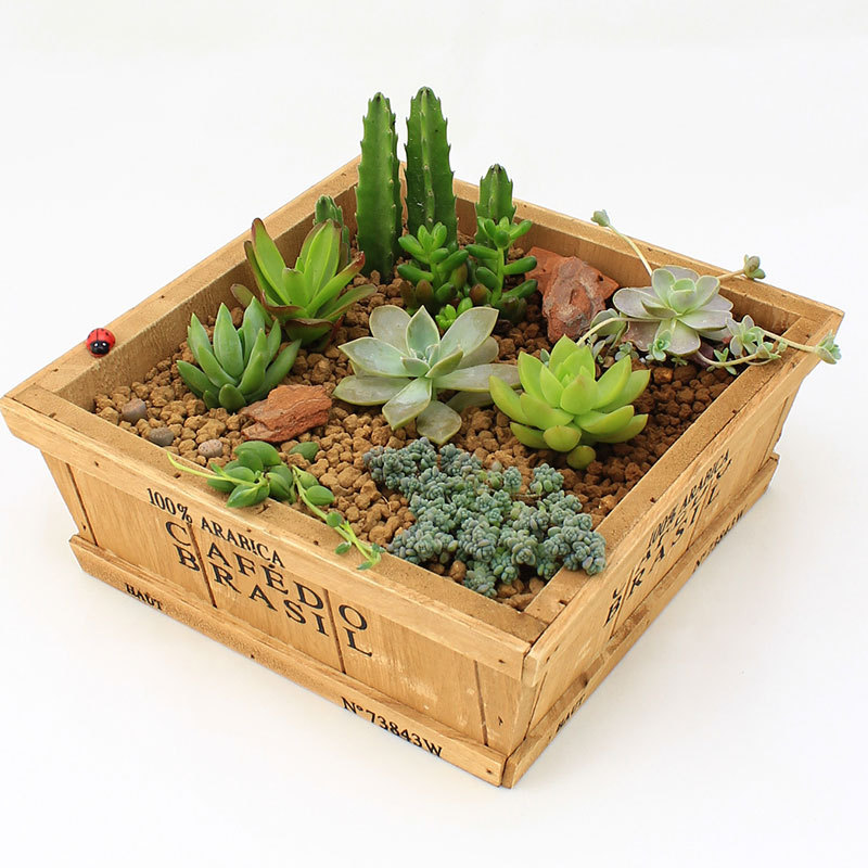 Zakka wood retro do old square flower pots meaty plant - Maceteros de madera ...