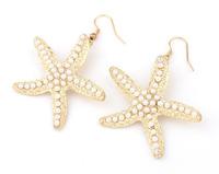 Lovely Starfish Earrings Fashion Statement Earrings cxt6232