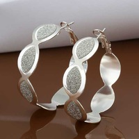 Free Shipping Wholesale 925 Sterling Silver Earring 925 Silver Fashion Jewelry,New Style Earrings SMTE480