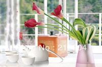 Free Shipping  Japanese Style Crystal Bone China Tea Set  Teapot Cup Gift