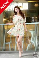 New Fashion Summer Dress 2014 Tourist Season Cartoons Graffiti Round Collar Lantern Sleeve Dress Short  Frozen summer