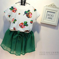 2014 Hot sell New design Baby girl's Flower T-shirt + skirt clothing set 2colors baby wear Kids Suit kids wea