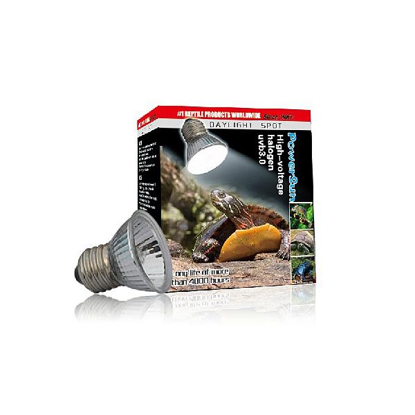 Hot Sale 50W UVA UVB Heating Daylight Halogen Lamp for Reptile Pet Tortoise / Lizard /Fish(China (Mainland))