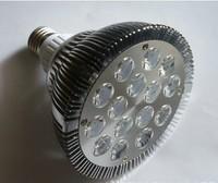 18X2W E27 LED Light Par38 LED Lamp Bulbs E27 Par38 led SpotLight  White|Warm White 100V-240V By DHL 8pcs/lot