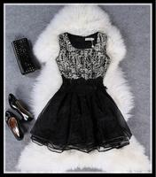 women summer dress New Hot Fashion summer dress 2014 cozy  casual elegant Nibbuns organza embroidery lace dress plus size S-XXXL