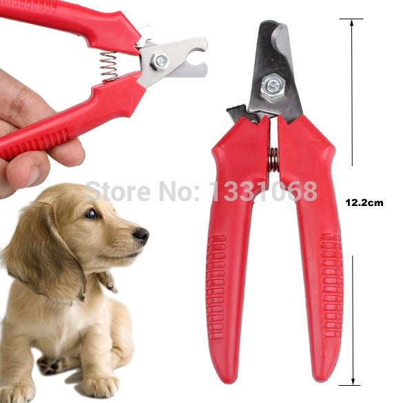 Товары для груминга собак