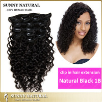 Clip in Human Hair Extensions 100g/120g/160g Long Curly Brazilian Hair Clips in Virgin Human Hair Natural Black