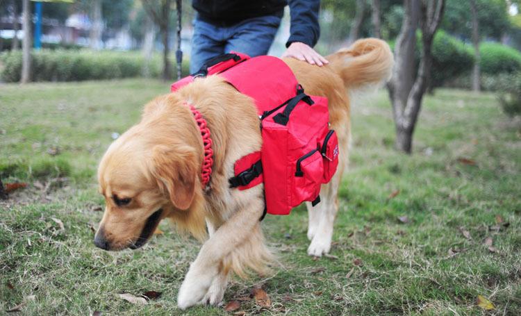 Сумка-переноска для собак Asahome , Samo asabg13 авиа переноска для собак