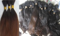 """12""""-26""""inches Two Tone Color *Multi-Color*Straight  hair *Bulk Remy Hair *500grams/lot"""