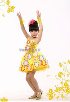 2014 New  Children Dance Wear Latin dance costume Flowers  Sequins  Skirt Children White princess dress IVU