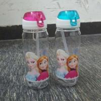 Wholesale retail Children Cup Cartoon Frozen Elsa Anna PP Plastic Water Bottle Kids Cartoon Drinkware Children Straw Cups DA370