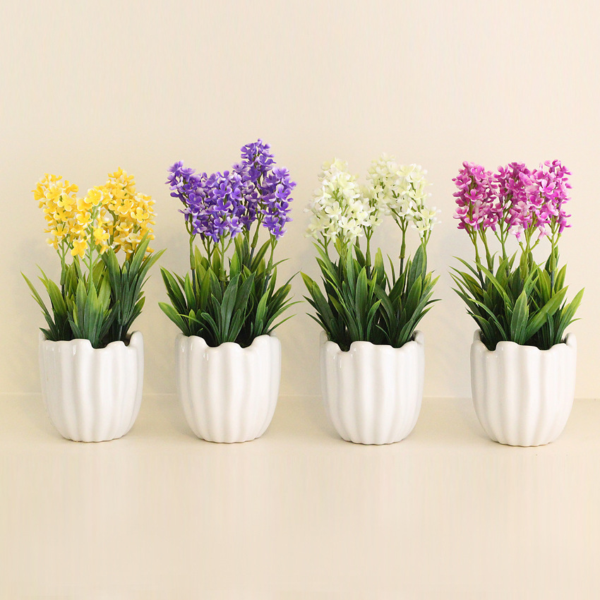 Hyacinth pot promotion online shopping for promotional hyacinth pot on alibaba - Planting hyacinths pots ...