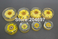 16pcs Mix 8 Gauges 16-30mm New Clear Acrylic Double Flared Saddle Plug Ear Tunnel Expander with Real Flower Inside