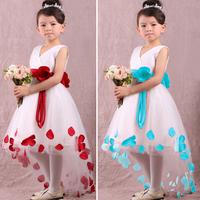 Free shipping -5pcs/lot -Romance snow princess dress-Gauze tutu dress flower girls dress - princess dress