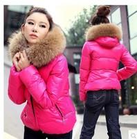 freeshipping women's autumn winter fur collar thicken warm hooded short jacket coat femal winter fur collar short down coat
