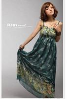 summer dress 2014 New bohemian floral chiffon women dress beach bandage dress