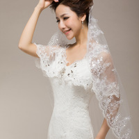 Free shipping 1 Layer Wedding Bridal Veil Lace Applique Beaded Edge Embroidery 1.5M Noble Cathedral  2015 hot sales